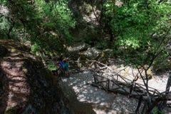 游人在蝴蝶谷森林里在罗得岛海岛,希腊上的探索远足路 免版税库存图片