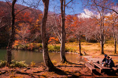 游人在Dokko池塘享用秋天森林 免版税库存照片