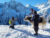 游人在Dombay拍与一头牦牛的照片 免版税图库摄影