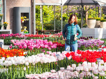 游人在Keukenhof 2016年,阿姆斯特丹,荷兰享用美丽的郁金香庭院 免版税库存照片