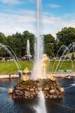 游人在Peterhof更低的公园的喷泉在Peterho 免版税库存照片