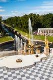 游人在Peterhof更低的公园的喷泉在Peterho 库存照片