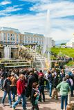 游人在Peterhof盛大小瀑布的喷泉 库存照片