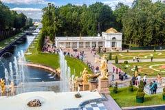 游人在Peterhof盛大小瀑布的喷泉 免版税库存图片