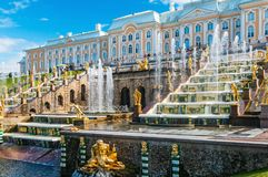 游人在Peterhof盛大小瀑布的喷泉 免版税库存照片
