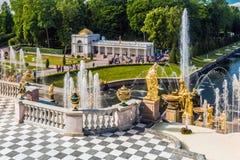 游人在Peterhof盛大小瀑布的喷泉 库存图片