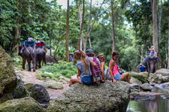 年轻游人基于岩石在密林 库存照片