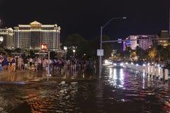 游人应付洪水在拉斯维加斯, 2013年7月19日的NV 库存照片