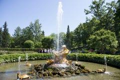 游人敬佩有氚核雕塑的温室喷泉, 免版税库存照片
