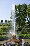 游人敬佩有氚核雕塑的温室喷泉, 库存图片