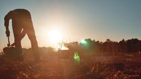 游人是啤酒开会的人由在自然野营的剪影阳光日落的篝火党运载一个轴和一个背包 股票录像
