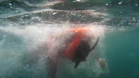游人是在救生背心浮游物水下潜航 影视素材