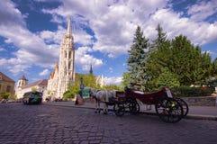 游人的马支架在布达佩斯市,匈牙利 免版税库存图片