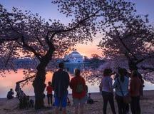游人等待日出华盛顿特区樱花节日 库存照片