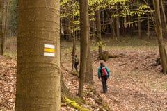 游人签到捷克 供徒步旅行的小道通过森林 家庭旅行 库存照片