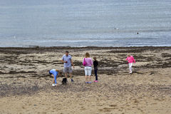 游人获得乐趣在Eyemouth在苏格兰,英国 07 08 2015年 免版税库存照片
