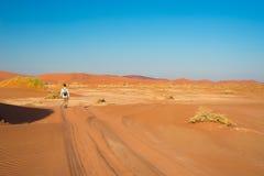 游人走到Sossusvlei的,纳米比亚沙漠, Namib Naukluft国家公园, scanic旅行desetination在纳米比亚 冒险和前 库存图片