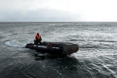 游人从在合恩角的游轮下船 图库摄影