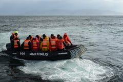游人从游轮下船通过极光在合恩角 图库摄影