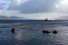 游人从游轮下船通过极光在合恩角 免版税库存图片