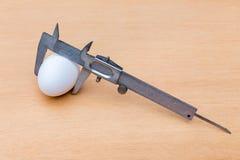 游标卡尺测量的白色鸡鸡蛋 免版税库存照片