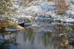 游泳乘一条靠码头的小船的鸭子。 免版税库存照片