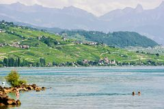 游泳和晒日光浴在湖边平地洛桑的人们 免版税库存图片