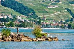 游泳和晒日光浴在湖边平地的人们在洛桑 免版税图库摄影