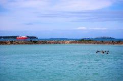 游泳在口岸,汤加附近的人们 免版税库存照片