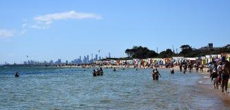 游泳在布赖顿海滩的人们 库存图片