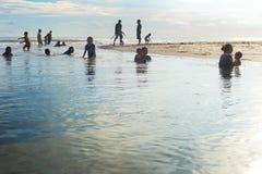 游泳在河的巴厘岛本机 库存图片