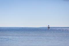 游泳在海的风帆冲浪者 免版税库存照片