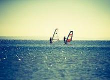 游泳在海的风帆冲浪者 免版税库存图片