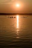 游泳在湖的人们在日落 免版税库存图片