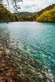 游泳在湖的鱼用绿松石水,在瀑布中小瀑布  Plitvice,国立公园,克罗地亚 库存图片