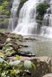 游泳在瀑布之下 免版税库存图片
