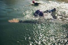 游泳在竞争中的运动员 库存照片