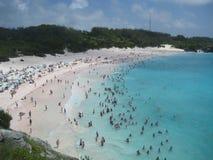 游泳在水晶大海的人们靠岸 图库摄影