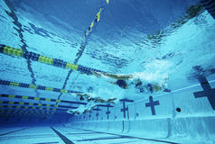 游泳在水池的游泳者 库存照片