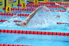 游泳在水池的竞争特写镜头 库存照片