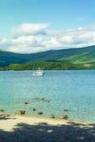游泳在Loch Lomond湖的鸭子在勒斯,苏格兰,英国 库存照片
