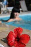 游泳妇女 免版税库存照片