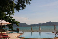 游泳池、太阳懒人在庭院旁边和飞机在蓝天 库存图片