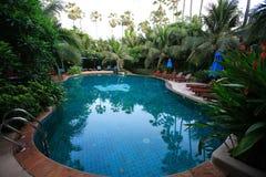 游泳池、太阳懒人在庭院里面和许多植物 免版税库存照片