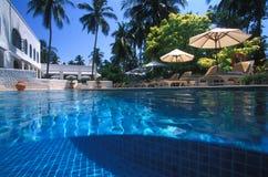 游泳池、太阳懒人在庭院附近和大厦 库存照片