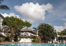游泳池、棕榈树和天空 免版税图库摄影