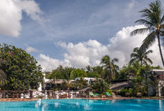 游泳池、棕榈树和天空 图库摄影
