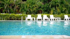 游泳池和棕榈树在热带庭院里 游人的天堂在晴天 慢的行动 1920x1080 股票视频