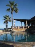 游泳池和棕榈树 图库摄影