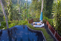 游泳池在森林里 免版税库存照片